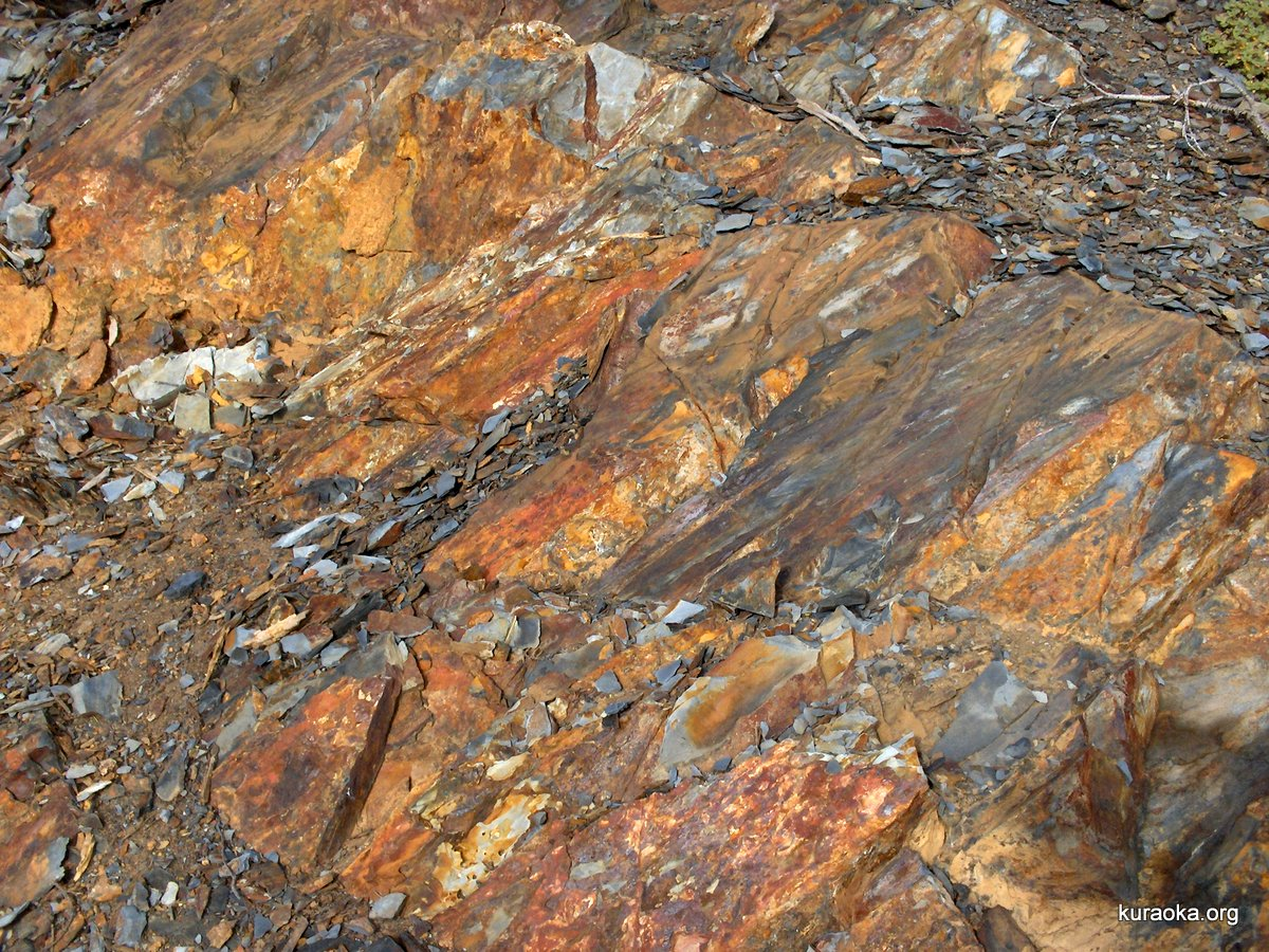 Shale with mountain patina